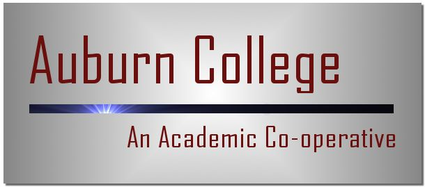 Auburn College is a social enterprise/cooperative founded to bring affordable quality education to the community